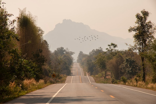 Conducir por una carretera de asfalto vacía a través de árboles y montañas.