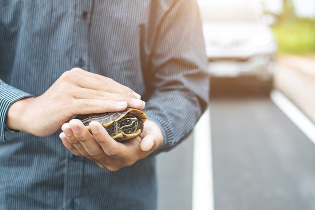 El conductor detiene el auto y ayuda a la tortuga en el camino