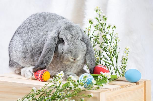 Conejo y huevos de pascua en verde.