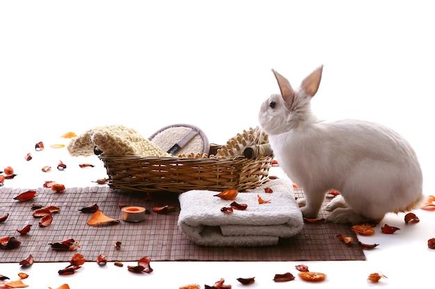 Conejo con productos de spa y pétalos de rosa.