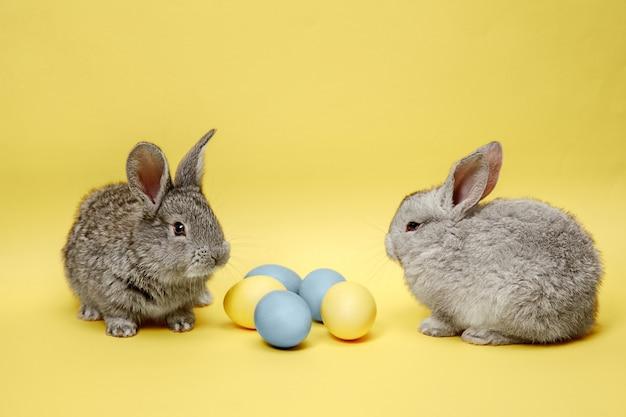 Conejos de pascua con huevos pintados sobre fondo amarillo. concepto de pascua, animales, primavera, celebración y vacaciones.