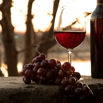 Conjunto de botella y copa de vino en la naturaleza.