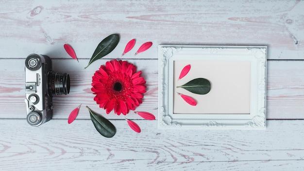 Conjunto de cámara retro, flor, hojas y marco de fotos.