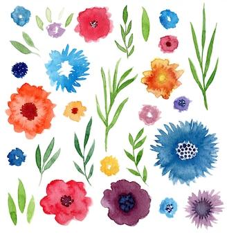 Conjunto floral de acuarela.