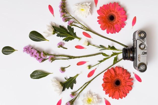 Conjunto de flores, hojas y cámara vintage.