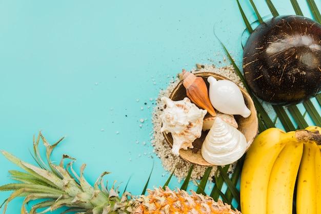 Conjunto de frutas tropicales y conchas marinas.