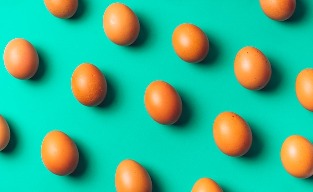 Conjunto de huevos de gallina a bordo