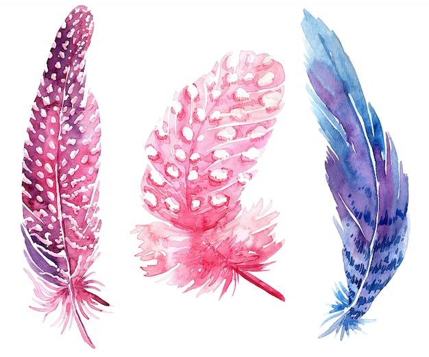 Conjunto de ilustraciones de plumas de boho acuarela.