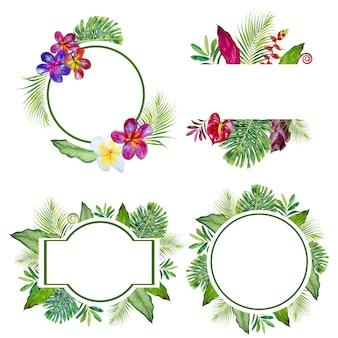 Conjunto de imágenes prediseñadas de acuarela flores tropicales marco. ilustración de flores exóticas