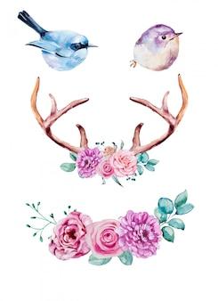 Conjunto de imágenes prediseñadas de pájaros y cuernos de acuarela