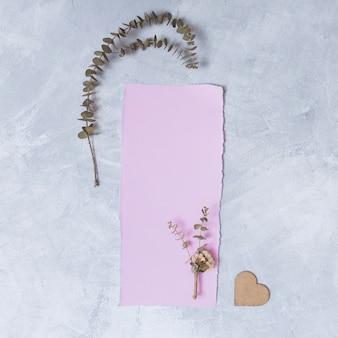 Conjunto de planta junto a papel y adorno de corazón.