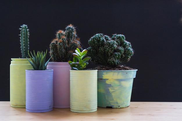 Conjunto de plantas en crecimiento en el contenedor pintado de reciclaje en el escritorio de madera