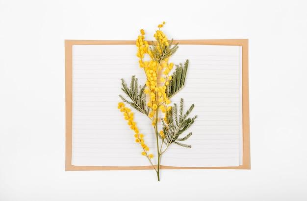 Conjunto de primavera de una rama flores de mimosa y un cuaderno sobre un fondo blanco