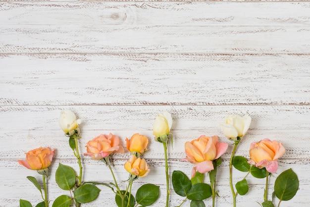 Conjunto de rosas naranjas y blancas sobre la mesa