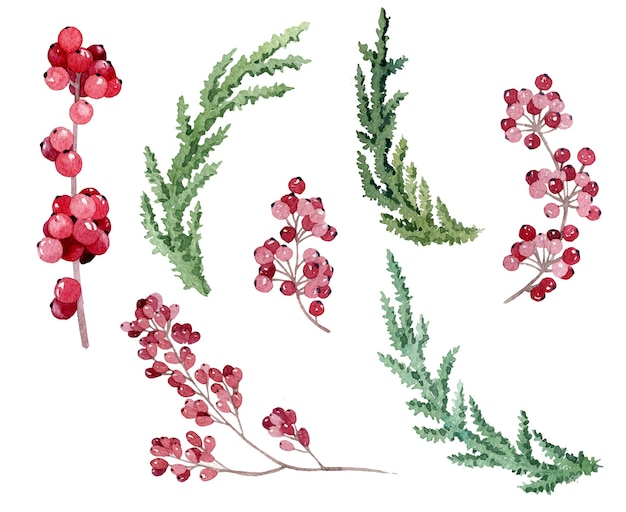 Conjunto vintage pintado a mano con ramas y hojas aisladas en blanco