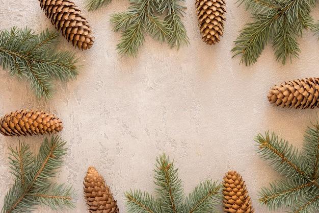 Conos y agujas de pino natural vista superior