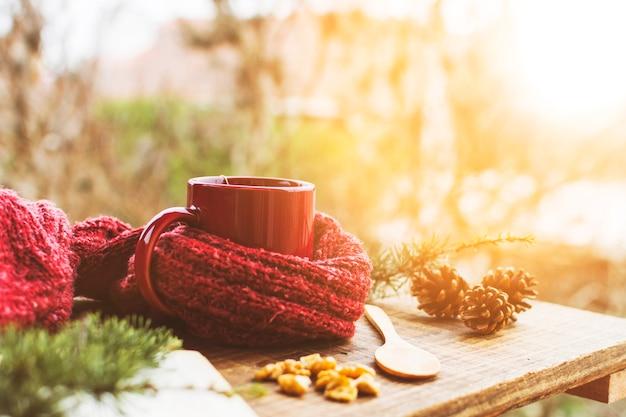 Conos de coníferas y ramitas cerca de suéter y bebida