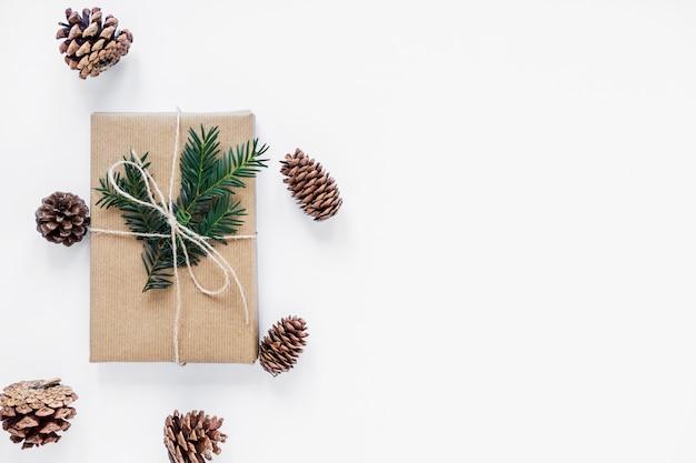 Conos de coníferas que mienten alrededor del regalo con la ramita