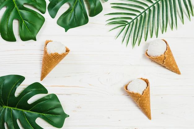 Conos de helado cerca de las hojas