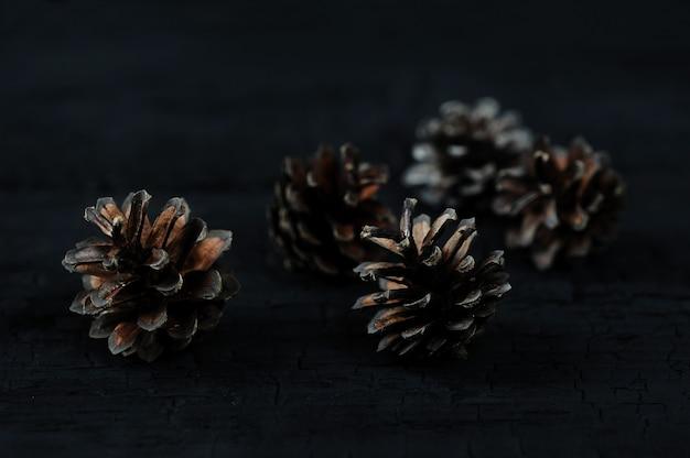 Conos de pino sobre fondo negro de madera