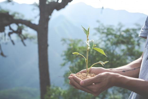 Conservación ambiental en el jardín para niños.