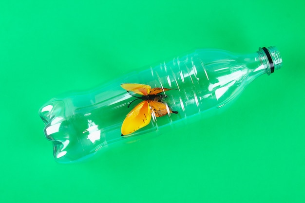 Contaminación plástica en la naturaleza del problema ambiental.