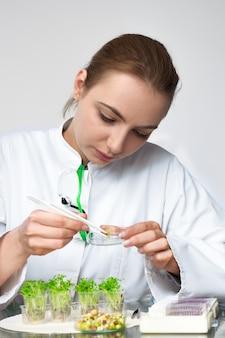Control de calidad. una joven científica escoge una nueva raza de berros optimizados para el consumo.