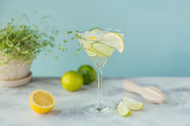 Copa de cóctel de pepino o cóctel sin alcohol, bebida refrescante de verano con hielo picado y agua con gas