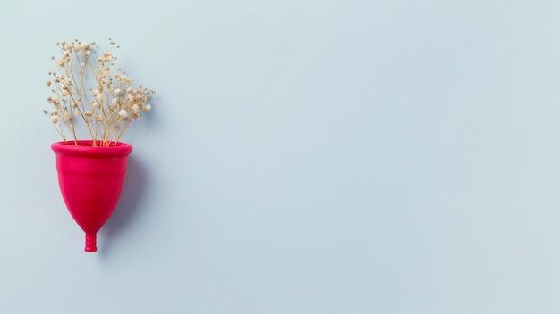 Copa de menstruación vista superior