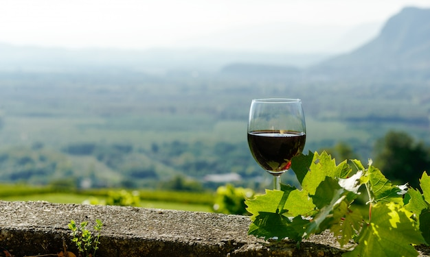 Copa de vino tinto expuesto al sol