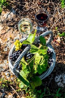 Copas de vino y uvas en canasta