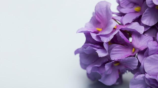 Copia espacio con flores florecientes