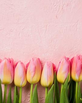 Copia espacio tulipanes alineados en la mesa