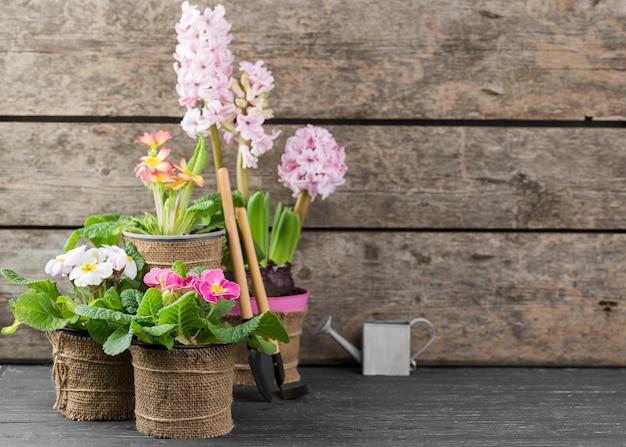 Copiar espacio macetas de flores