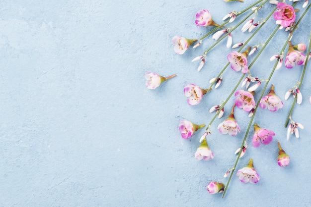 Copiar espacio ramas de flores en la mesa