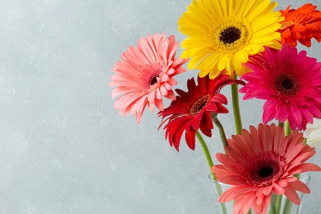Copiar el fondo del espacio con flores de gerbera