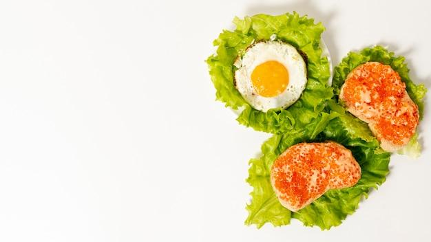 Copie la disposición del desayuno de proteínas espaciales sobre fondo liso