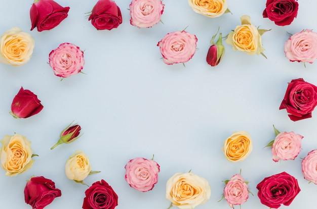 Copie el espacio rodeado de rosas coloridas