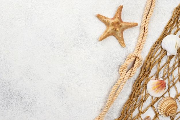Copy-space fish net y estrellas de mar