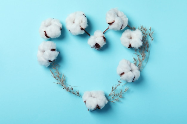 Corazón de flores de plantas de algodón sobre superficie azul