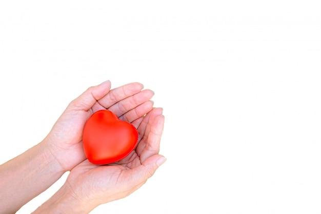 Corazón rojo en dos manos para el día de san valentín