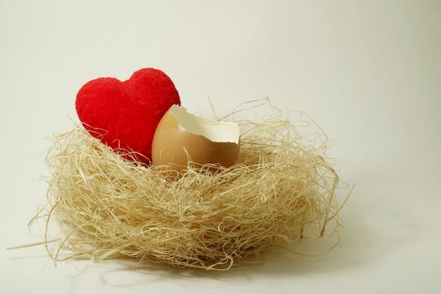 Corazón rojo y un huevo en el nido de un pájaro