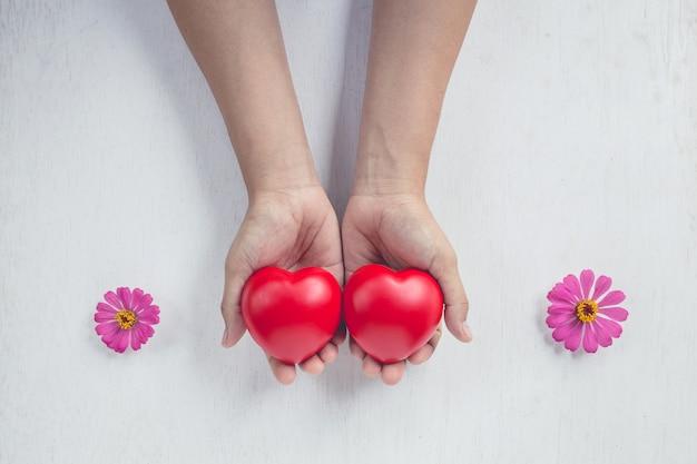Corazón rojo en la mano de la niña