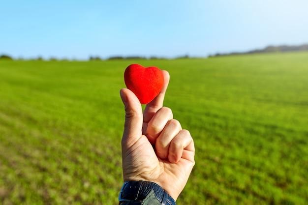 Corazón rojo en la mano. romántico.