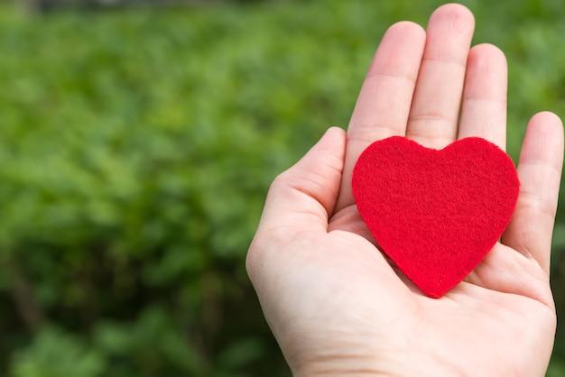 Corazón rojo en la mano sobre los fondos de hierba verde