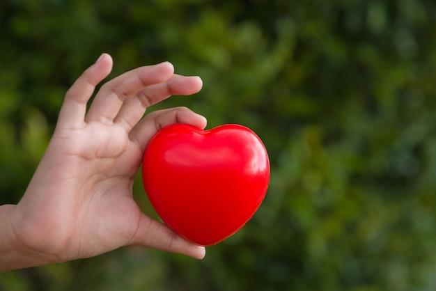 Corazón rojo en la mano