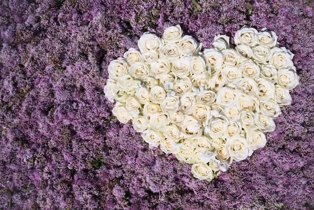 Corazón de rosas blancas. cama de flores, vista superior, espacio de copia.