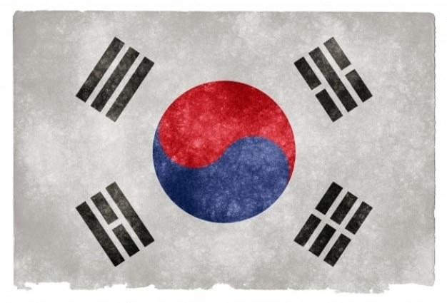 Corea del sur grunge bandera