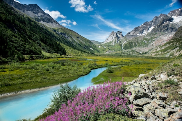 Corriente de agua rodeada de montañas y flores en un día soleado