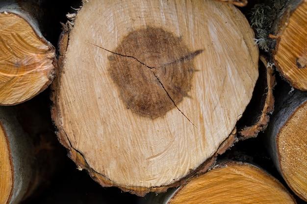 Corte de madera primer plano
